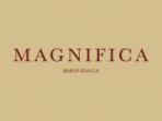 Керамогранит ITALON - Magnifica